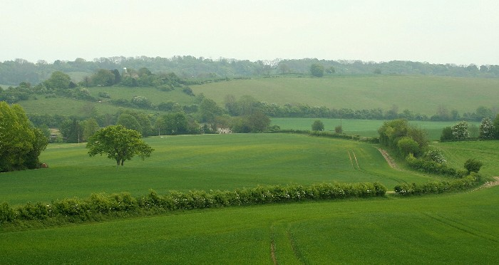View towards Crundale near Wye. Click to enlarge